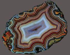 Fortification Agate, Fairburn, South Dakota Minerals And Gemstones, Crystals Minerals, Rocks And Minerals, Fairburn Agate, Beautiful Rocks, Agates, Rocks And Gems, Shape Patterns, Fossils
