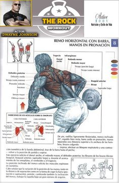 Health And Fitness Expo, Fitness Nutrition, Butt Workout, Gym Workouts, Calisthenics Training, Human Body Anatomy, Muscle Up, At Home Gym, Mens Fitness