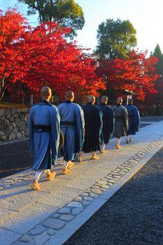 嵐山にて 早朝で快晴の天龍寺を訪れました。 境内の紅葉は正に見頃を迎えており その中をお坊さんたちが進む姿が印象的でした。 開...
