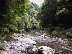Best Kyoto Hikes