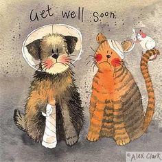 Cat get well soon card from a great watercolour by Alex Clark. Illustrations, Illustration Art, Clark Art, Doodle, Cat Birthday, Get Well Soon, Cat Cards, Get Well Cards, Cards For Friends