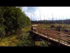 Eifel, Nationalpark,wilder Kermeter - YouTube