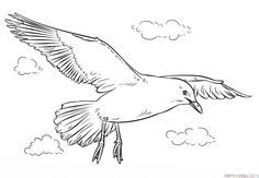 How to draw a seagull step by step. Drawing tutorials for kids and beginners.