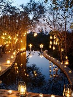 Londolozi Sabi Sand, Kruger National Park -> 50 Of The Best Hotels in the World (Part 4). Pure magic.