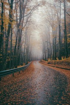 { autumn road trip } via designlovely. - Travel tips - Travel tour - travel ideas Autumn Aesthetic, Autumn Cozy, All Nature, Fall Pictures, Hello Autumn, Autumn Inspiration, Landscape Photography, Beautiful Places, Scenery