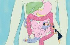 La limpieza de colon
