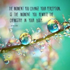 The moment you change your perception is the moment you rewrite the chemistry of your body Quotes To Live By, Life Quotes, Art Quotes, Body Cells, Perception, You Changed, Nursing, At Least, Inspirational Quotes