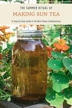 Making Sun tea is easy, and takes advantage of the summer sun and brew up Summer Drinks, Fun Drinks, Cold Drinks, Beverages, Sun Tea Recipes, Drink Recipes, Sun Tea Jar, Brewing Tea, Tea Blends