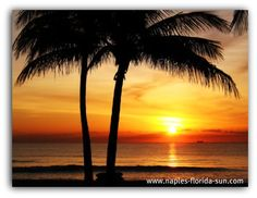Cheap Naples Florida Vacations: Inexpensive Things to Do in Naples FL