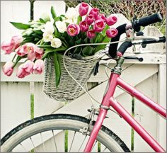 Tulips & bicycles pink and green