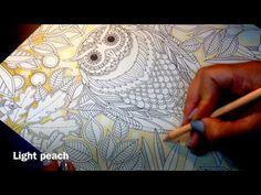 Secret Garden - The Owl (Background Part 1) - YouTube