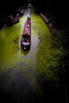 A canal boat along Regents Canal near Islington from the summer.    Nature at work. The barge is cutting it's way throu a sea of pond weed floating on the surface