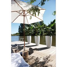 Gorgeous tall designer planters online from potstore.co.uk