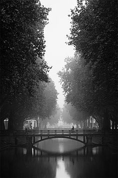 Bridge and mist