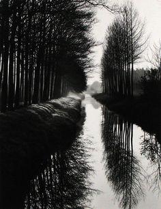 Photography by Brett Weston