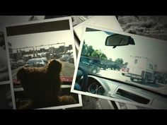 Barrison's Travels: Road Trip