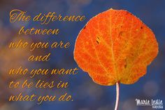 The difference between who you are and who you want to be lies in what you do. ~ Bill Phillips