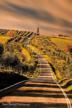 Tuscany Italy by Ivan Bertuse@photographs:djferreira224 | Tumblr