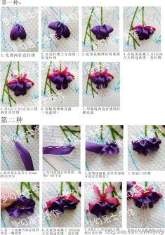 SRE Fuschia flowers