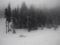 - ̗̀ saith my he A rt ̖́- She Wolf, The Villain, Narnia, Daydream, Winter Wonderland, Mists, At Least, Deep, Fantasy