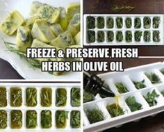 Freeze and preserve herbs in olive oil
