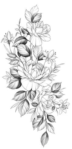 Picture of Hand drawn bunch with big rose and dog-rose flowers isolated on white background. Pencil drawing monochrome elegant floral composition in vintage style, t-shirt, tattoo design. stock photo, images and stock photography. Sketch Tattoo Design, Floral Tattoo Design, Tattoo Sleeve Designs, Flower Tattoo Designs, Sleeve Tattoos, Nature Tattoos, Body Art Tattoos, Pencil Drawings Of Flowers, Rose Drawings