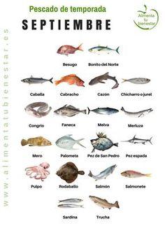 Seasonal fish in September Fish Chart, Yummy Drinks, Yummy Food, Japanese Menu, In Season Produce, American Food, American Recipes, Seasonal Food, Seafood Recipes