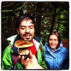 """@stefanoschiavo's photo: """"#porcino #mountain @bazzzen @valecavi"""""""