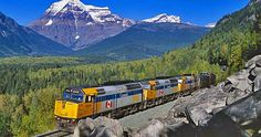 Via Rail, took the train to move to BC with 3 of my kids and VERY large dog. We loved it and would do it again anyday. Kids usually ride for half price in the summer.