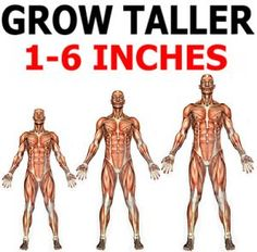 Fast and Easy Ways to Grow Taller Naturally