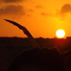 Desert sunset #beautifulskies #solitarysociety #travelcom #nofilter #colombia #cabodelavela #hippychick #feathersinherhair #orangesky