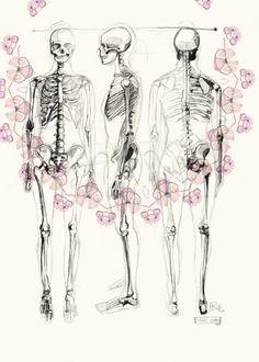 human skeleton drawing - multi view