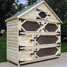 Image result for flemish giant rabbit cage