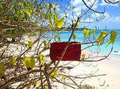 La Pochette Rouge Ripauste dans les Caraïbes : Gwada !