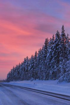 Cotton candy skies for a Lapland sunset.