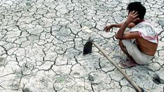 Canada gaining greatly from India's drought? Read: http://www.eximdesk.com/buzz/india-drought-a-boon-for-canadian-farmers