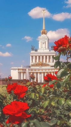 Red rose garden, white castle and blue sky for your wallpaper background. Aesthetic Images, Flower Aesthetic, Aesthetic Backgrounds, White Aesthetic, Aesthetic Iphone Wallpaper, Aesthetic Wallpapers, Flower Iphone Wallpaper, Rose Wallpaper, Wallpaper Backgrounds