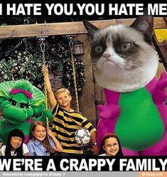 "Grumpy Cat stars in ""Crappy Family"" Grumpy Cat Quotes, Funny Grumpy Cat Memes, Cat Jokes, Funny Cats, Grumpy Cats, Funny Minion, Funny Animal Quotes, Animal Jokes, Cute Funny Animals"