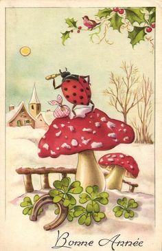 Lady Bird on Large Mushroom