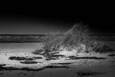 Strand Rosenhagen  #beach #coast #lowkey #chickster #tumblr #500px #health #shadow #water #nature #landscape #sand #gras #sky #waves #jogging #surf #kite #fun #enjoy #sport #board #balticsea #baltic #sea #ocean #500px #canon