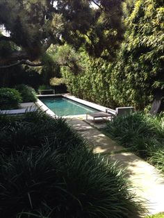 Love the secluded walkway to the pool and the idea of walking through gardens to get there.