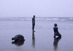 Antony Gormley, the immensity of nature.