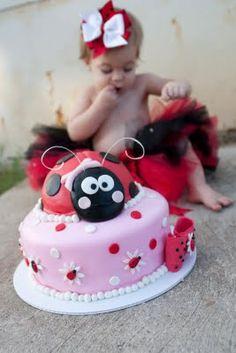 <3 the ladybug cake