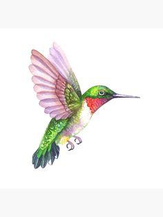 """Hummingbird Watercolor"" Art Print by annabucciarelli Bird Paintings On Canvas, Bird Artwork, Animal Paintings, Hummingbird Drawing, Hummingbird Pictures, Colorful Hummingbird Tattoo, Flower Art Drawing, Kawaii Illustration, Tropical Art"