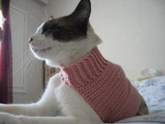I think my cat needs one of these LOL! Mock Turtleneck Sweater for Cats | AllFreeCrochet.com