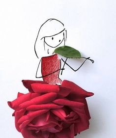 Red Rose Girl plays a violin :-)