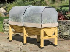 VegTrug. Looks easy to assemble and might protect crops from the squirrels and insects.
