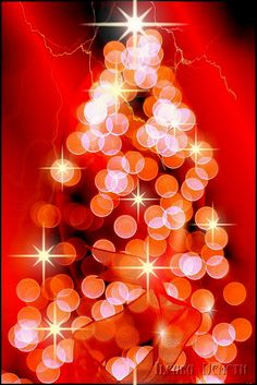 Christmas, lovely bokeh