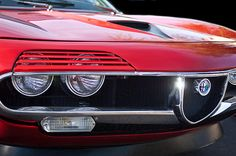 1971 Alfa Romeo Montreal Grille Emblem - Car photographs  by Jill Reger
