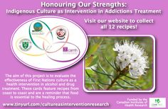 Labrador Tea recipe from the White Buffalo Treatment Centre in Saskatchewan for the Honouring Our Strengths: Indigenous Culture as Intervention in Addictions Treatment (HOS:CasI) project Gambling Addiction, 12 Recipe, Food Shows, Tea Recipes, Recipe Cards, Buffalo, Labrador, Centre, Good Food